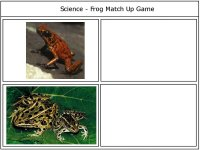 Science 4 kids – Frog match up game