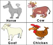 Related Keywords & Suggestions for Farm Animals Pictures To Print