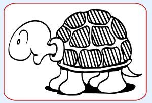 Printable Black & White Turtle Picture For Baby To Focus On