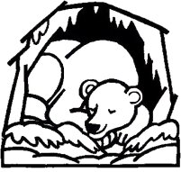 Bear sleeping, hibernating, color the bear