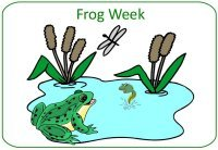 June Preschool Curriculum – Frog Theme