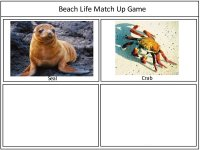 Beach Card Match Up