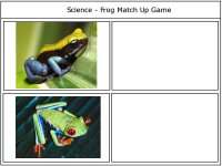 Frog Match Up Game