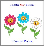 Toddler Lesson Plans for May - Week 3 - Bugs Theme
