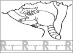 Letter R Raccoon Writing & Coloring Page