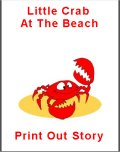 Little Crab Beach Story