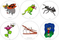 Bug Hunt Story Cards Circle Time Activity