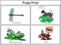Grasshopper Shape Puzzle