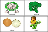 Vegetable cards for vegetable lesson plans