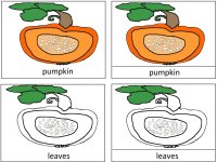 Science for kids – Parts Of A Pumpkin Poster
