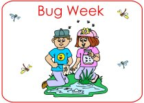 Preschool Bug Theme Poster