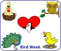 Toddler August Week 1 Poster for bird week theme
