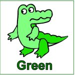 Toddler Color Display – Color Green – Green Alligator