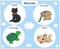Pets – learn Spanish