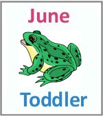 June Toddler ages 2.5 to 6 years