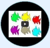 Preschool Videos