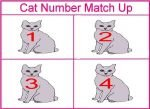 Cat Number Game