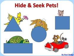 Hide n seek pets