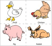 Preschool Farm Animals - Duck, Chicken, Pig & Rabbit