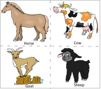Preschool Farm Animals - Horse, cow, goat & sheep
