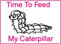 Caterpillar Coloring Book